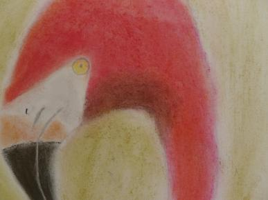 flamant-rose au pastel